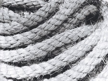 texture: Rope texture
