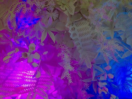 colorful light display: Colorful floral cut-out light display