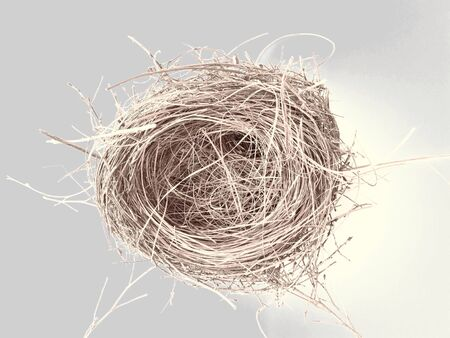 weave: Bird nest Stock Photo