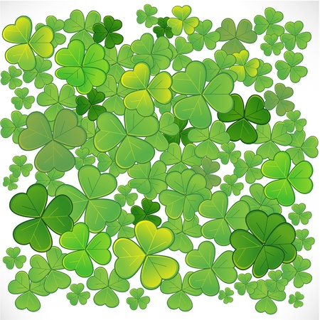 Background with clover Stock Vector - 12481026