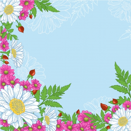gerbera: Background with mix of flowers decorative background with a composition of white and pink flowers on blue   Illustration