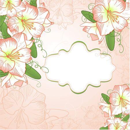 burgeon: Background with amaryllis