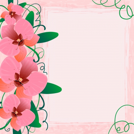 Floral background with orchid, EPS10 Vector