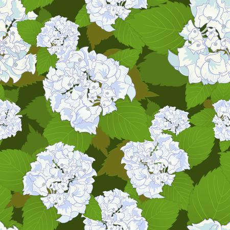 corolla: Seamless background with white hydrangea