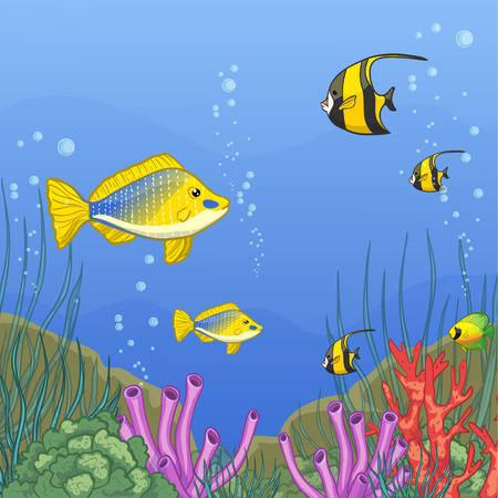 alga: Underwater world with coral reefs and colorful tropical fishes, vector image, eps10 Illustration