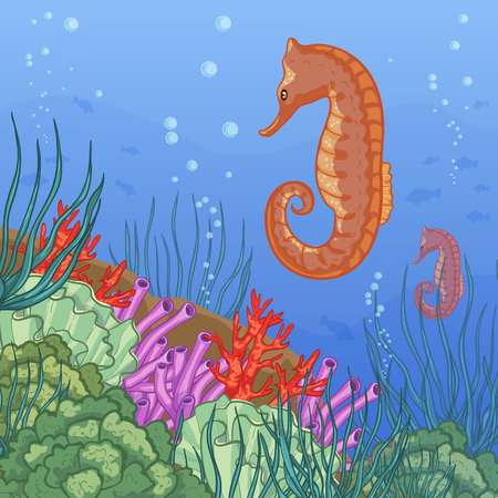 reefs: Underwater world with coral reefs and sea-horse, vector image, eps10