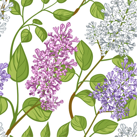 Seamless pattern with lilacs Illustration