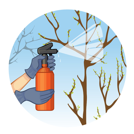 seasonal worker: Hands spraying tree in garden with protection substance Illustration