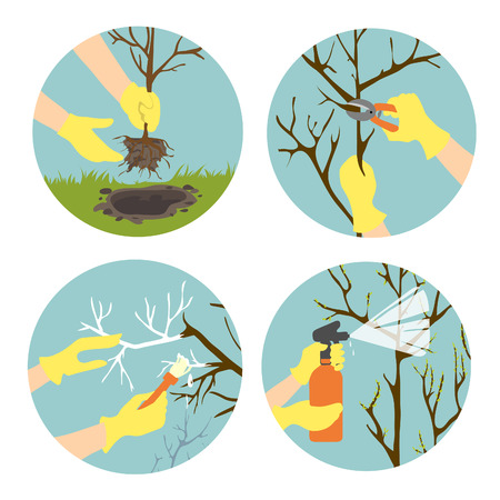 Icons set in flat design style showing seasonal activities in garden. Planting, trimming, spraying and whitewashing  trees