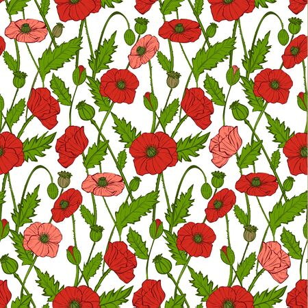 Seamless pattern with decorative poppies flowers, vector 矢量图像