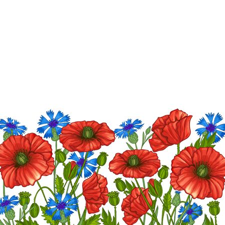 Floral background with poppies and cornflowers, vector image Standard-Bild - 129253752