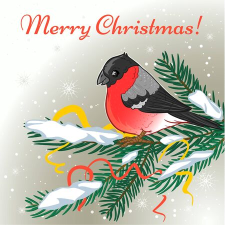 Cute cartoon Christmas card with bullfinch on the background with fir branch and greeting, vector image, eps10