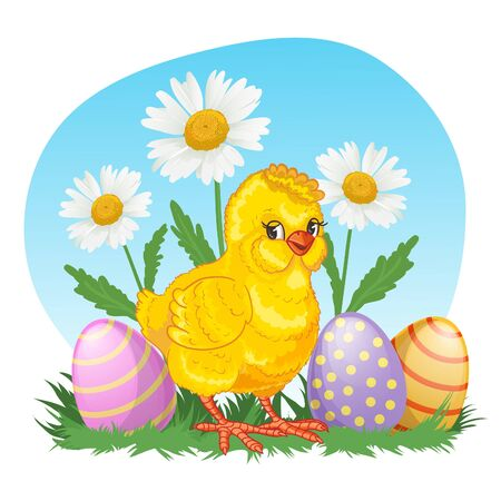 Illustration with cute cartoon baby chicken on background with chamomiles and easter eggs, vector image for Easter