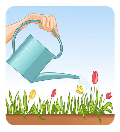 Hand with the can watering flowers, vector image