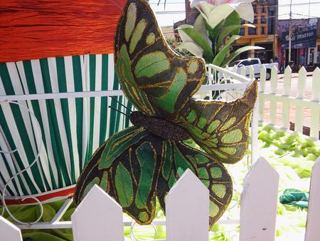 Butterfly in the garden Stok Fotoğraf