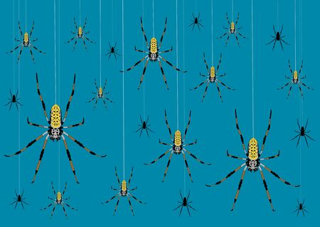Variously sized spiders hanging from webs Stock Photo