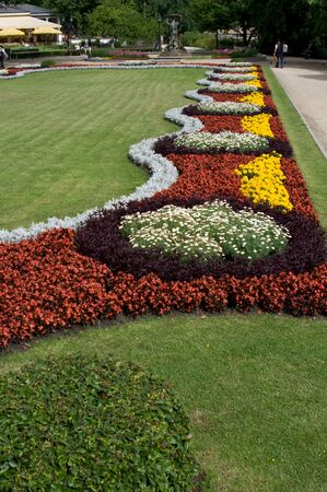 natue: Colour flowers in park in centre of Riga