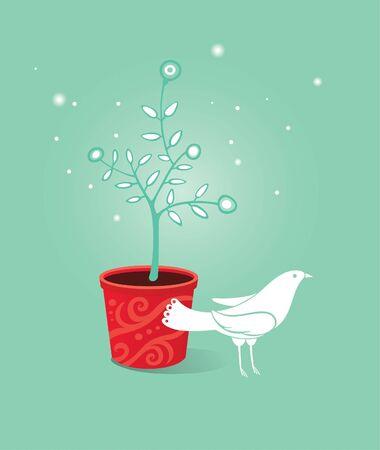 white dove 版權商用圖片