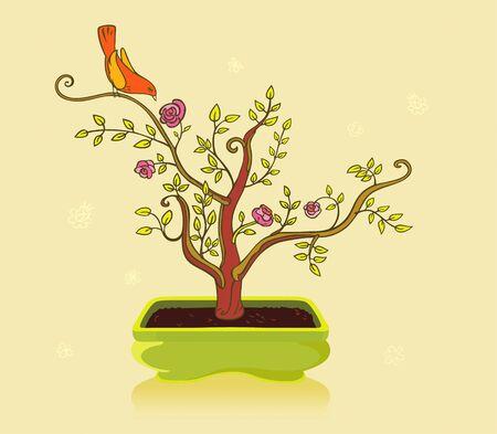 bonsai 版權商用圖片