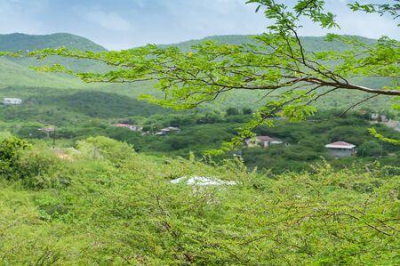 curacao: Curacao landscape