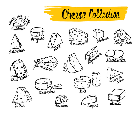 Vector illustration of cheese types in hand drawn style. Isolated on white Illustration