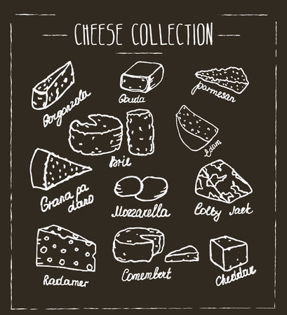 gouda: Cheese collection. Hand drawn vector type of cheese on chalk board
