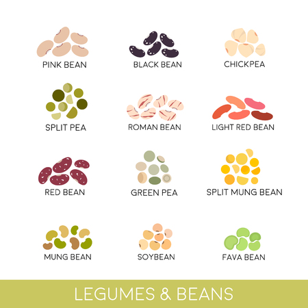 Beans and legumes Set. Vector illustration isolated on white Ilustração