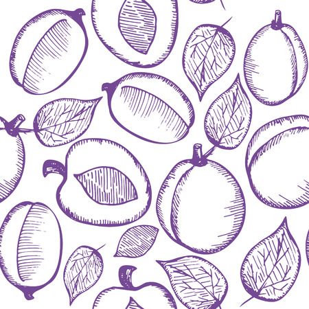 plums: Seamless pattern with plums in sketch style.  Vector illustration.