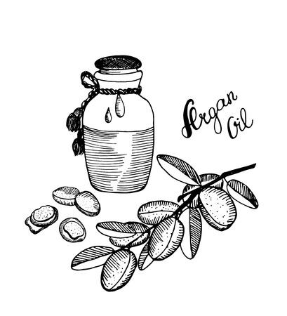 Hand drawn argan, branch sketch. Argan oil bottle. Vector illustration