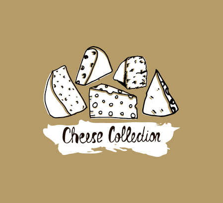 Hand drawn cheese background. Vector illustration of cheese in vintage style. Cheese banner. Illustration
