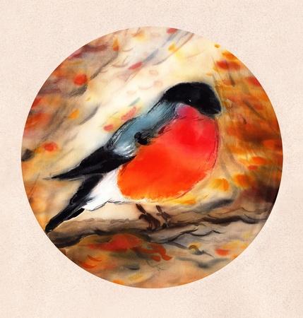 Painted Watercolor Bullfinch  on Silk