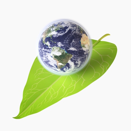 Three-dimensional Globe on Green Leaf  Environmental Conservation concept