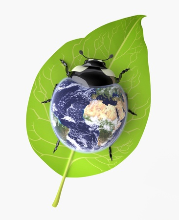 The Three-dimensional Beetle symbolizing Environmental Awareness and an Acceptance of Responsibility for the Care of our Earth; Globe mapping image provided by NASA http:visibleearth.nasa.govview.php?id=57735