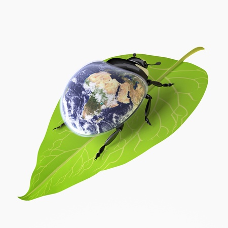 The Three-dimensional Beetle symbolizing Environmental Awareness and an Acceptance of Responsibility for the Care of our Earth; Globe mapping image provided by NASA http://visibleearth.nasa.gov/view.php?id=57735 Stock Photo - 18560473