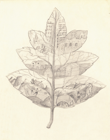 darwinism: Child s Drawing of a Leaf  Evolution concept   This Image made by Me in the Childhood  I Think it Could be Useful for Kids, Art or School-related Issues Stock Photo
