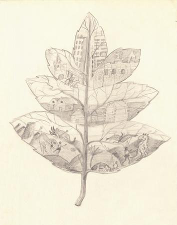 Child's Tekening van een Leaf Evolution-concept Dit beeld in de Childhood gemaakt door mij ik denk dat het nuttig zou kunnen zijn voor kinderen, kunst of-School-gerelateerde kwesties