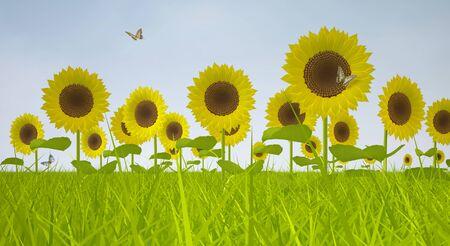 Bl�henden Sonnenblumen. Landschaft mit Feld von Sonnenblumen und blauer Himmel Lizenzfreie Bilder