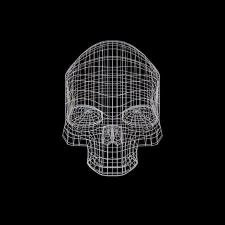 jolly roger: Skull. The Three-dimensional Skull on a Black background. Head. Deaths Head. Jolly Roger. Wire Skull. Wire Skeleton. 3d model. Modeling. Rendering in 3D Program