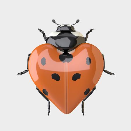 Ladybug. Heart shaped Ladybug. The Three-dimensional Ladybug in Shape of Heart. Isolated on the White Stock Photo