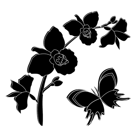 orchid branch: Black silhouette of orchid flowers with butterfly. Orchid branch background