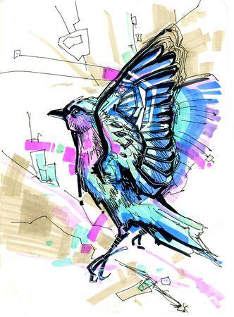 blue bird thrush
