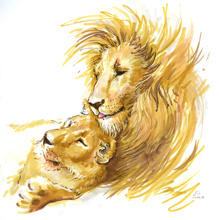 lions couple in love