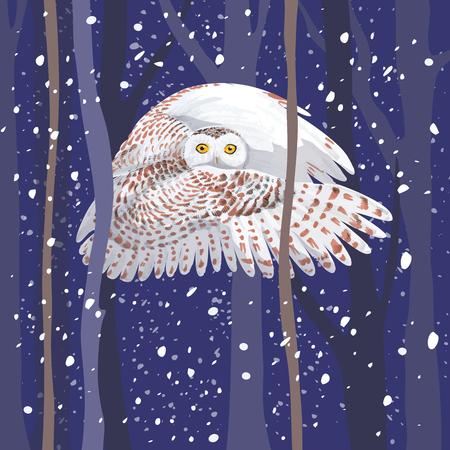 polar owl flies through the night wood  イラスト・ベクター素材
