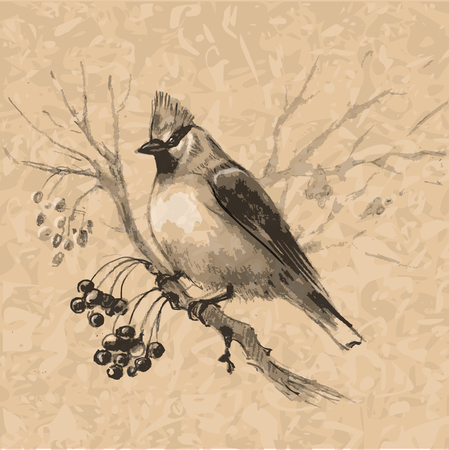 sketched by coal a small bird on a rowan branch