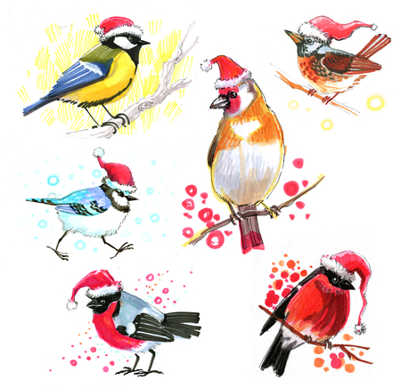 colored birdies in Christmas hats drawn with a marker sketch