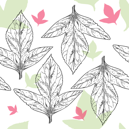 Bright graphic pattern from a strip of leaves painted with ink, with light colored elements on the background
