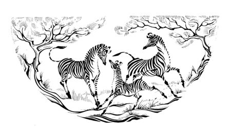 a family of zebras is playing. semicircular decorative graphics. freehand ink drawing.