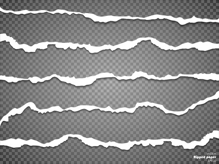 Torn paper sheet, ripped paper edges isolated on transparent background . Vector EPS10 illustration. Illustration