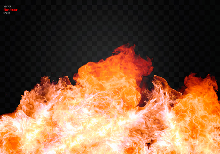 Fire flame. Vector realistic elements. Vector EPS 10