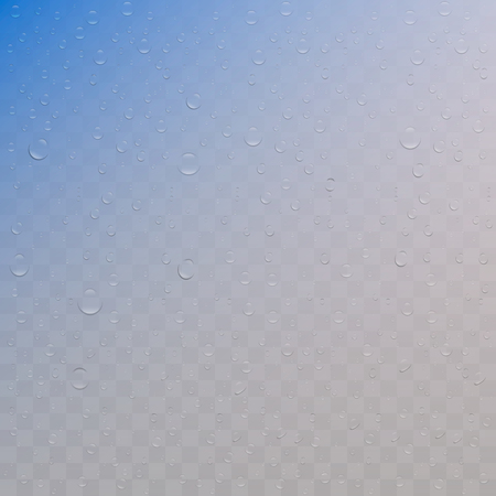 Realistic water drops on transparent background. Rain droplets for transparent surface. Pure water bubbles isolated. Vector clear vapor water bubbles on window glass surface for your design.